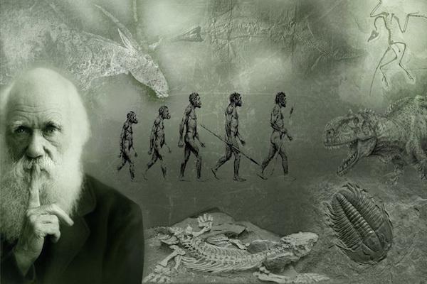 Ученые нашли брешь в теории Дарвина о зарождении жизни