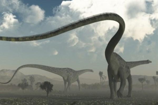 Динозавры мигрировали из Азии в Америку