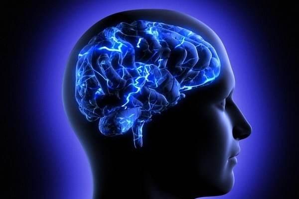 В мозге есть бактерии, и он может
