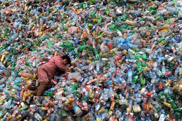 Воздух, почва, вода и животные терпят бедствие из-за деятельности людей