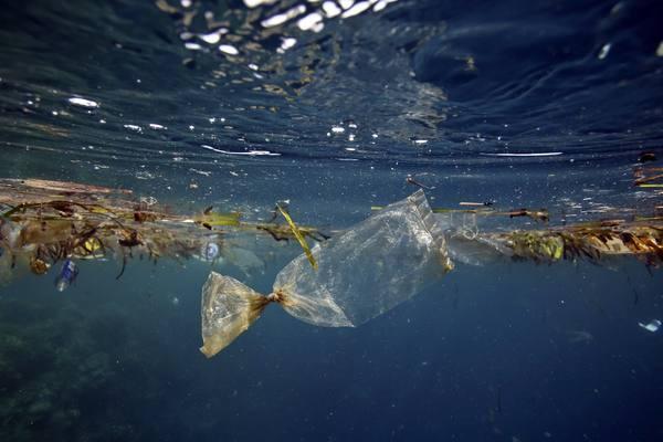 Ученые США: пластик бесследно исчезает в Мировом океане