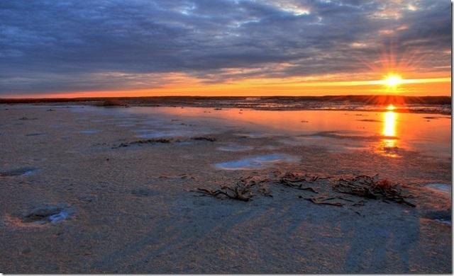 Аральское море получило статус озера