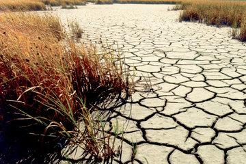 Деградация почв в Европе будет продолжаться