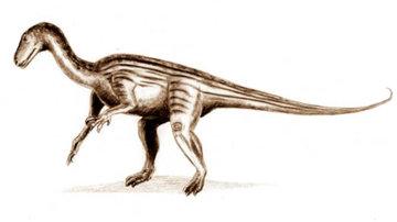 Палеонтологи создали цифровую копию мозга бристольского динозавра