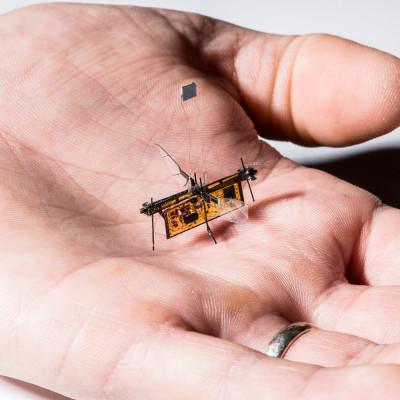 Робопчела на диэлектрических актуаторах совершила управляемый полет