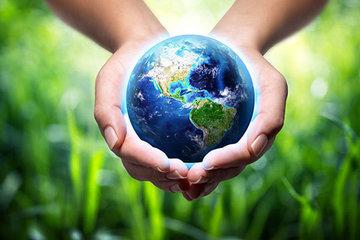 Жители России озвучили главные экологические проблемы страны