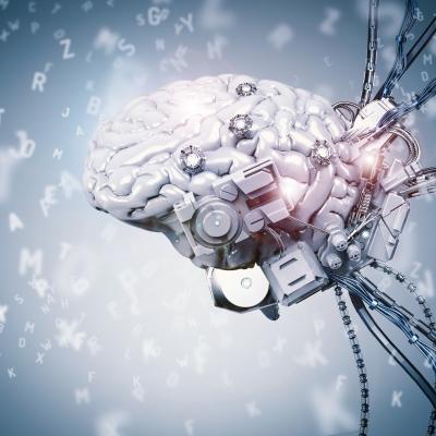 Шесть научных фактов о нашем мозге