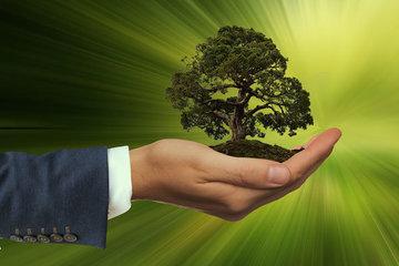 Экологическое законодательство: из опыта Японии