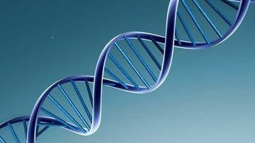 Что было раньше: нуклеиновая кислота или белок