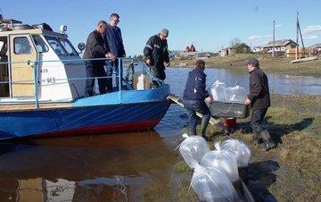 Азово-Черноморскому бассейну вернут статус самого рыбного места